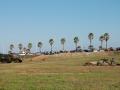 expohistorica 2008 088